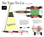 The Tiger Tri Cat