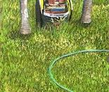 Dead rickshaw with garden hose