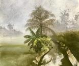 'Misty canal'