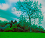 Swirling Shades of Green