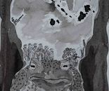 Memory of a toad