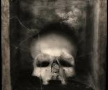 Skulls Art | Augusto De Luca