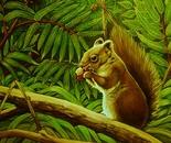 L'écureuil au vinaigrier