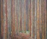 HOMAGE TO KLIMT PINE FOREST 1