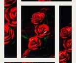 Rose rosse di carta foto collage