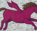 The Pink Pegasus Pony