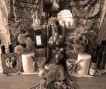 Altar for the Sad Death of a Selfie Addict (Rosita)