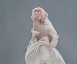 Horse and monkey