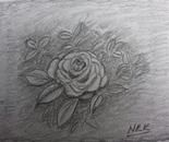Rose artestic