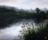 Westfield River MA