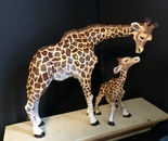 Giraffe with Child