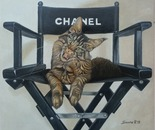 gatto chanel