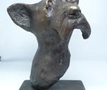 Schnauzer bronze