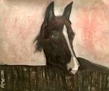 Soulful Eyes by artist Ane Howard