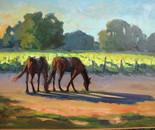Horses in the Vineyard