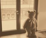 Waiting Teddy bear