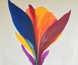 Rio De' Colores #42 -19