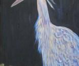 BLUE BIRD...HERON