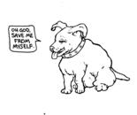 Dog God