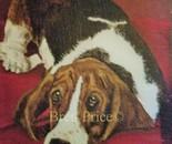 Betsy Beagle