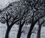 Rain forest.series