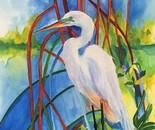 Egret in the Mangroves