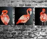 Tryptique flamingo