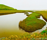 Point Reyes Lagoon