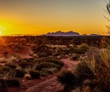 Outback at Sunset