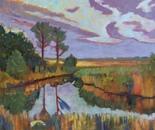Marshy Creek