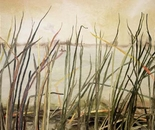 Haarlem Reeds