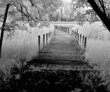 Boardwalk to Peace