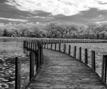 S Curving Boardwalk
