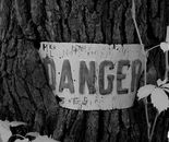 Danger Vert