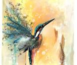 Golden Kingfisher