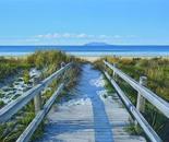 The Boardwalk Revisited