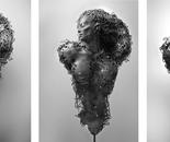 Black-Aphrodite