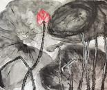 Lost lotus