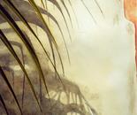 Chimney Shade and Palm