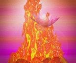 Dynamic Fire