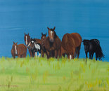 Herd of horses relaxing