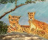 Leopardi - Non guardarmi