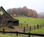 Country Barns & Pasture