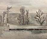Winter Field (Millbrook, NY)