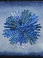 Hypnagogia: Blue Rose