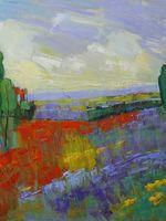 Poppy Field Valley