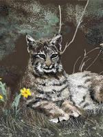 Bobcat at Ease