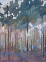 'Evergreen Mist'