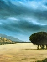 'Windswept'