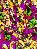Flowers - Orange